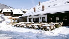 Kirchleitndorf Dorf Großwild